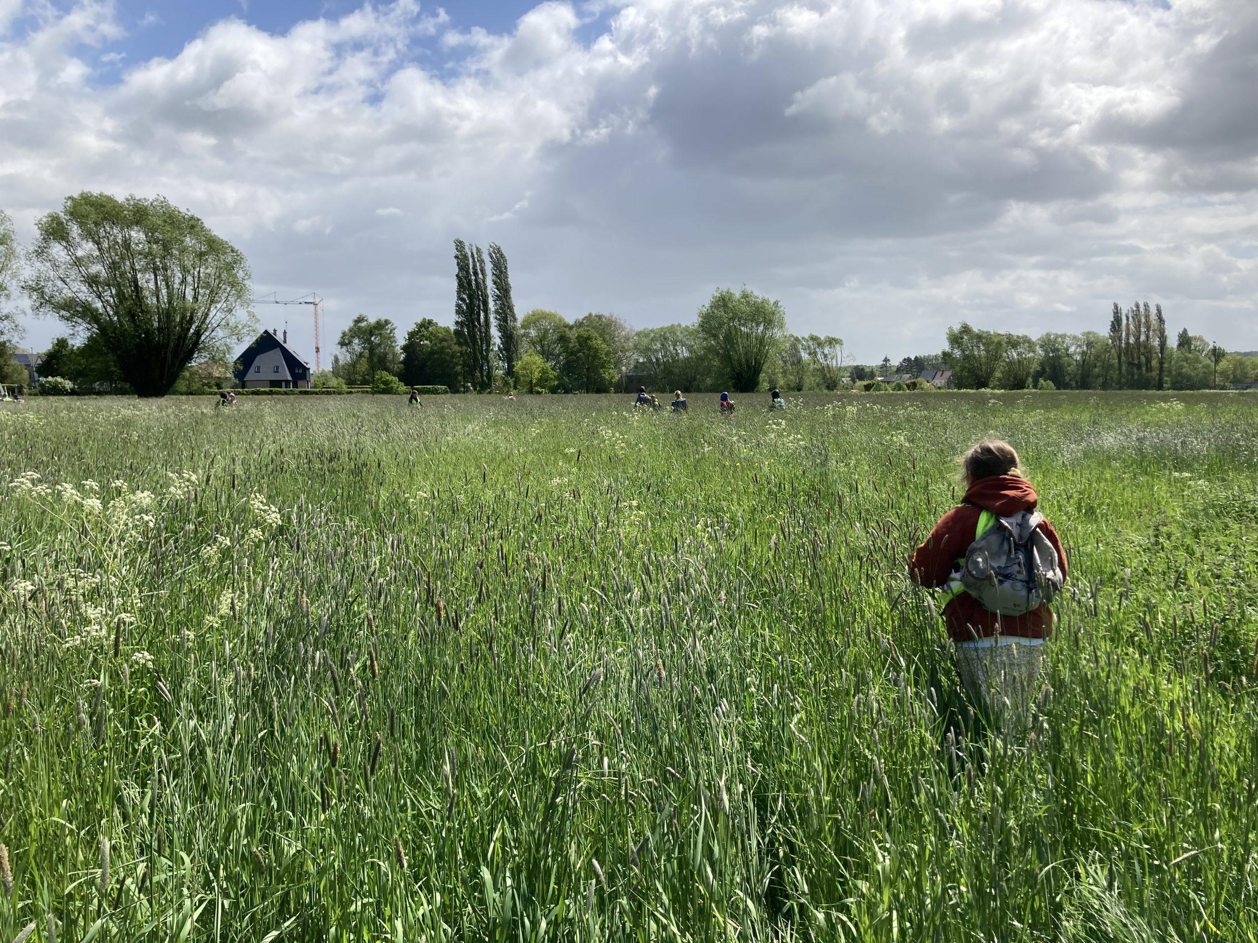 Heemkundeperiode Landbouw en Pinksteren